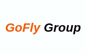 white background version of gofly group logo