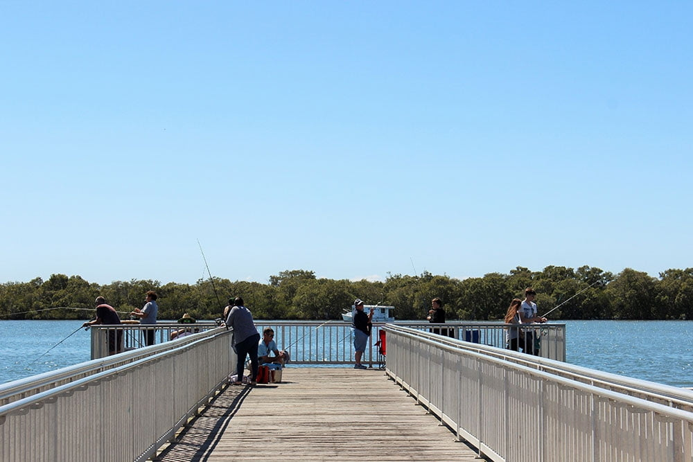 jetty jacobs well